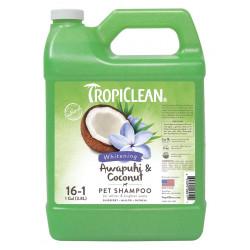 Shampoo Awapuhi Lattina 3,8 l